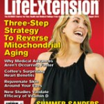 2013_8_cover
