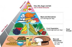 obesity-21-food-pyramid